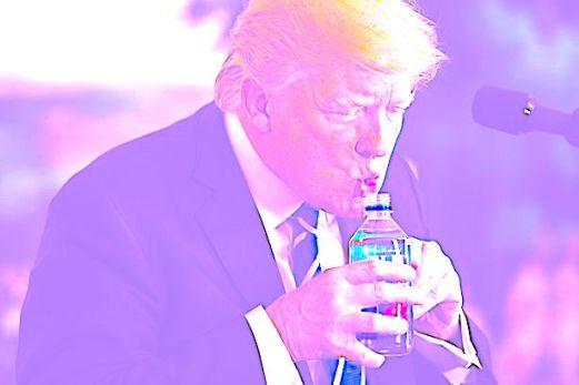 President-Trump-Touts-Foreign-Policy-Accomplishments-on-Asia-Trip-Washington-USA-15-Nov-2017 copy